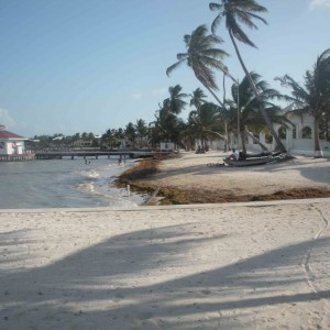 Photo of white sandy beach in Belize, palm trees, pier, small fishing boat on beach.